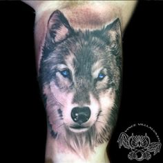 Wolf Tattoo by Vince Villalvazo