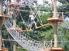 High Rope Course - tree house fun?
