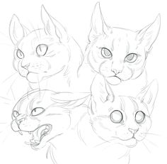 Cat doodles by SHADE-ShyPervert.deviantart.com on @DeviantArt #CatDrawing