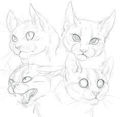 Cat doodles by SHADE-ShyPervert.deviantart.com on @DeviantArt #CatDrawing