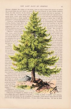 christmas decor dictionary art vintage pine by ExLibrisJournals