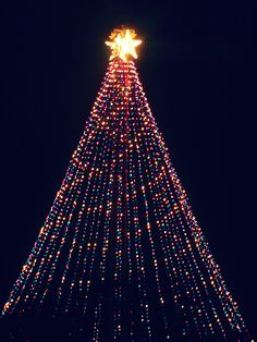 Zilker Christmas Tree-Austin, TX. So excited that the trail of lights is back this Christmas!
