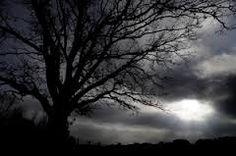 Kuvahaun tulos haulle gothic tree