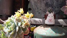 Mini maceta cerámica cachorro  #diseño #decoración #araberabarromoldeado