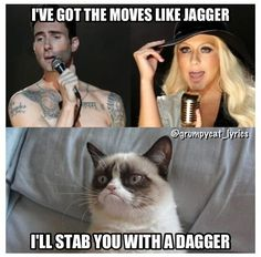 Grumpy Cat sings Moves Like Jagger by Maroon 5 ft. Christina Aguilera #GrumpyCat #Meme