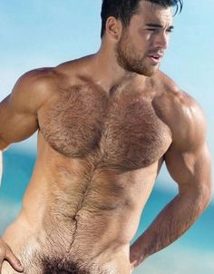 Naked hairy men muscle sexy