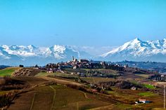 Monferrato with the Alps in the Distance in the Piedmont wine region via @Wine Folly  #italy #wine