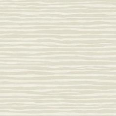 "York Wallcoverings Dazzling Dimensions Terra Nova 27' x 27"" Wallpaper Roll Color: Cream / Soft Metallic Gold"