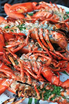 Grilled Lobster with Cilantro Chile Butter Lobster Menu, Lobster Dishes, Crab And Lobster, Lobster Recipes, Seafood Dishes, Fish And Seafood, Fish Recipes, Seafood Recipes, Lobster Shack