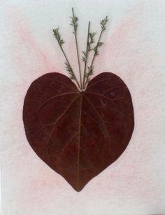 Real Pressed Flower Greeting Cardspack of 3 by SmileWithFlower, $14.99
