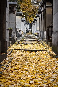 I want to go back with the kids when they are old enough to appreciate the people buried there ... beyond Jim Morrison! lol Cimetiere Pere-Lachaise Paris ~ http://vipsaccess.com/luxury-hotels-paris.html