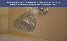 .astuce, nettoyer la douche avec du vinagre blanc et un sac plastique....laisser reposer toute la nuit puis rincer.