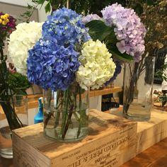 love hydrangeas. from the #floralatelier.