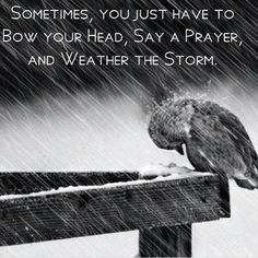Bow, pray, and weather the storm. I am STRONGER CUZ OF the spiritual storms i have gone thru in my life to bring me closer to Jesus Christ with dvery step when the devil THOUGHT He was using it to make me stumble... The Lord made me STRONGER instead...lol AND IM STILL STANDING AFTER ALL IVE BEEN THRU LOL