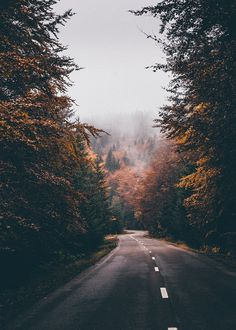 Shared by Savannah. Find images and videos about photography, nature and travel on We Heart It - the app to get lost in what you love. Beautiful World, Beautiful Places, Beautiful Roads, Landscape Photography, Nature Photography, Travel Photography, Aesthetic Photography Nature, Autumn Aesthetic, Autumn Inspiration