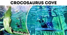 6Ejercicios antienvejecimiento que pueden hacer que tucuerpo sesienta como nuevo Aquarium, Photoshop, Gym, Physical Therapy, Shoulder Muscles, Tighten Skin, Back Pain, Hip Flexors, Thighs