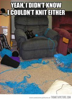 #CatsCanNOTKnit #CatHumor  Like my Facebook page for daily cat humor.  https://www.facebook.com/crazycatladyandproud