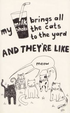Catsparella: New Blog Replaces Popular Song Lyrics With Lots and Lots of Cats