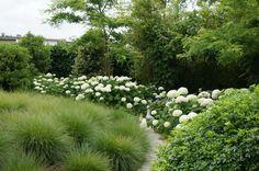 Compo meststoffen voor een mooie tuin zonder moeite - mooiste tuin te West-Vlaanderen