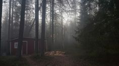 I've been spending the weekend in a cabin in the woods, by a little lake, where this fog rolled in, and the full moon showed up. I have to say it was pretty magical and slightly creepy and totally. Witch Cottage, Forest Cabin, Cabins In The Woods, Country Roads, Adventure, Outdoor, Night, Outdoors, Witch House