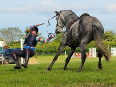 Accidents happen at horse farms, and how you handle them can make a big difference.