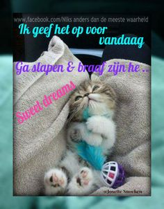 slaap lekker Good Morning Happy Weekend, Good Morning Good Night, Weekend Fun, Day For Night, Good Night Moon, Stars And Moon, Smiley, Sweet Dreams, Animals And Pets