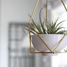 Brass Himmeli Hanging Planter no. 3 / Modern Mobile / Geometric Terrarium / Spring Decor
