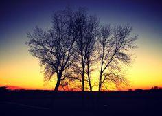 Iowa sunset. (Photo by Risa Jenner)