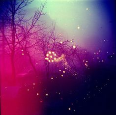 * : fairylights  <3