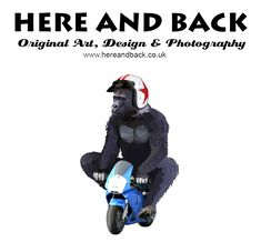 New design by Holly Biker, Motorcycle, Unisex, Funny, Photography, Animals, Design, Humor, Photograph