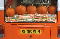 snail trail - vw camper hire & campervan rental, london, suffolk & norfolk