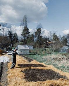 Kompostia ja kohopenkkiä Vlogi#9 - ku ite tekee