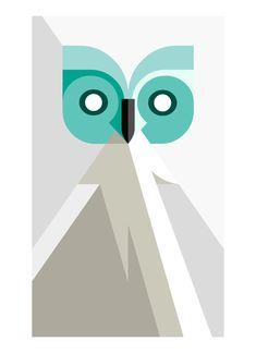Day Owl by Josh Brill