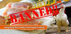 Hong Kong Bans Poultry from Italian Province World Organizations, Bird Flu, Food Safety, Pet Health, Poultry, Hong Kong, Backyard Chickens, Food Security