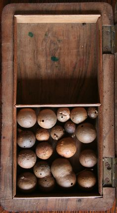 .Art & Style By Adolfo Vasquez Rocca D.Phil Colecction  oak galls?