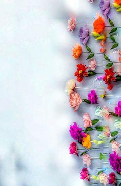 Frühling Wallpaper, Spring Wallpaper, Flower Background Wallpaper, Flower Phone Wallpaper, Cellphone Wallpaper, Flower Backgrounds, Colorful Wallpaper, Nature Wallpaper, Wallpaper Backgrounds