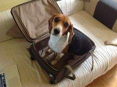 So where are we going?
