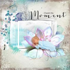 I used the following kits from Tiramisu Designs: Bloom Fest Carnival Night Lilac Tender Photos from Pixabay Extractions by me.  www.goldenmeade.com Tiramisu, Favorite Color, Lilac, Birthday Gifts, Carnival, Bloom, Challenges, Layout, Kids Rugs