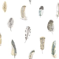 Feathers by Galerie - Blue / Grey / Beige : Wallpaper Direct Feather Wallpaper, Beige Wallpaper, Black And White Wallpaper, Wallpaper Panels, Wallpaper Roll, Wall Wallpaper, Blue Gray Bedroom, Pink Bedroom Decor, Dream Bedroom