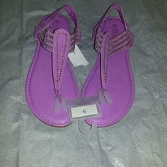 Lavender/purple sandal size 9 Brand new with tags sandals with soft feel. No buckles just slip on! Purple Sandals, Shoes Sandals, Fashion Tips, Fashion Design, Fashion Trends, Lavender, Slip On, Brand New, Tags