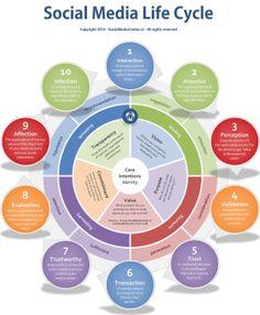 SOCIAL MEDIA -         Social Media Life Cycle [#infographic] #socialmedia.