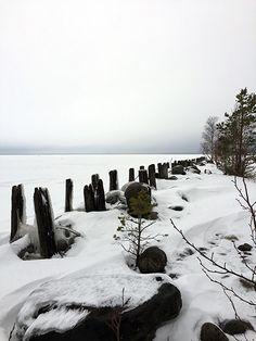 Kuhasalon virkistysalue, Joensuu, Pohjois-Karjala