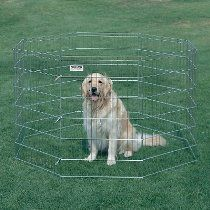 "Pro-Handler Exercise Pen in Silver Height: X-Large (42"", as shown)"