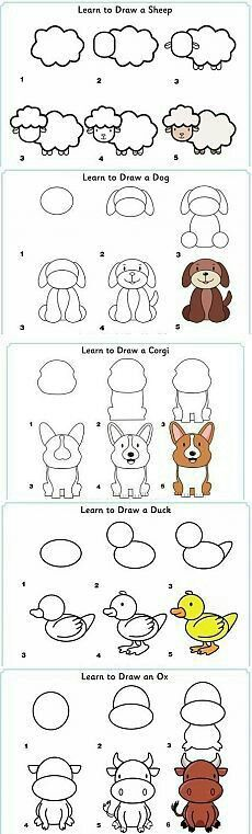 Learn to draw animals - sheep, dog, corgi, duck, cow - Zeichnung Doodle Drawings, Cute Drawings, Doodle Art, Simple Cartoon Drawings, Simple Animal Drawings, Dog Drawings, Doodle Tattoo, Directed Drawing, Step By Step Drawing