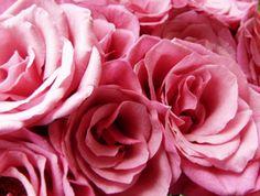 Pink Pink Pink #pink