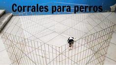 Corral para perros (venta)                                                                                                                                                     Más