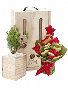 Christmas Gift idea Tree Gift NZ online delivery