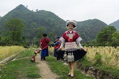 """IRON SMITH"" MIAO - village GAO ZHAI   Flickr - Photo Sharing!"