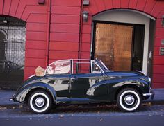 My 1st car was a '57 Morris Minor Convertible in Racing Car Green. My dad had it refurbished, it went like a bomb!