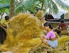 """Coir.. I did not know that. Never heard it. Had """"kind of"""" wondered about those kinds of doormats, just never pursued the whole thought process. Can't imagine how many coconuts it takes to satisfy the World's demand for coir products....."""